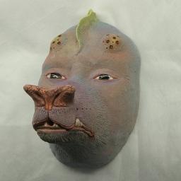 liquen mask 08