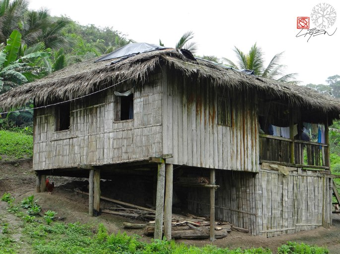 Casa Caimito playa