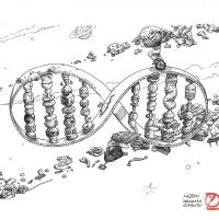 Genoma infinito