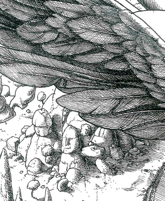 detail3B